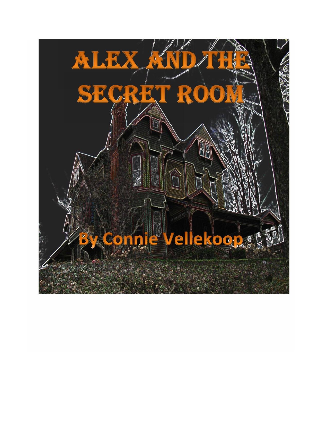 Alex and the Secret Room