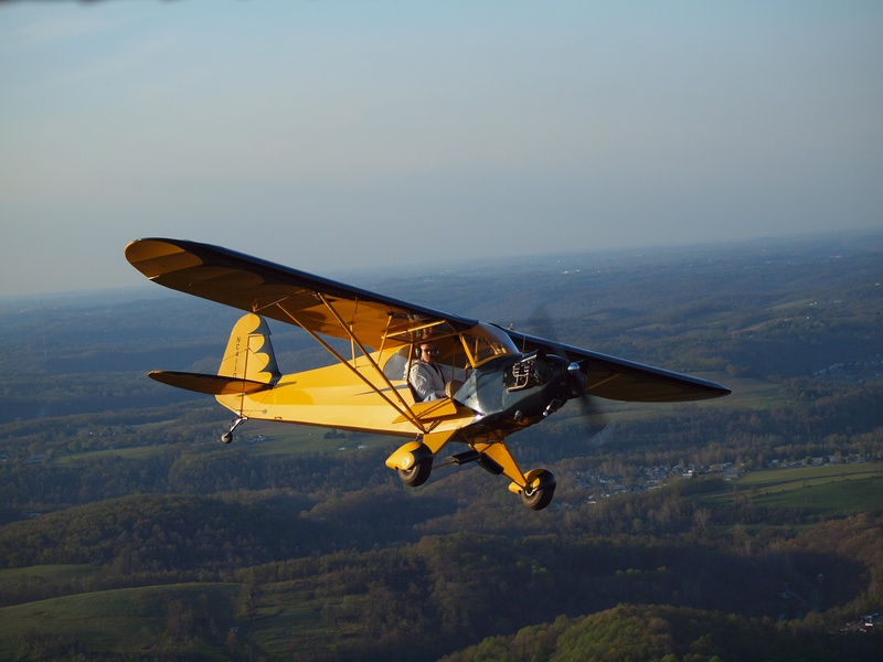 Reed Clip-Wing Cub 6