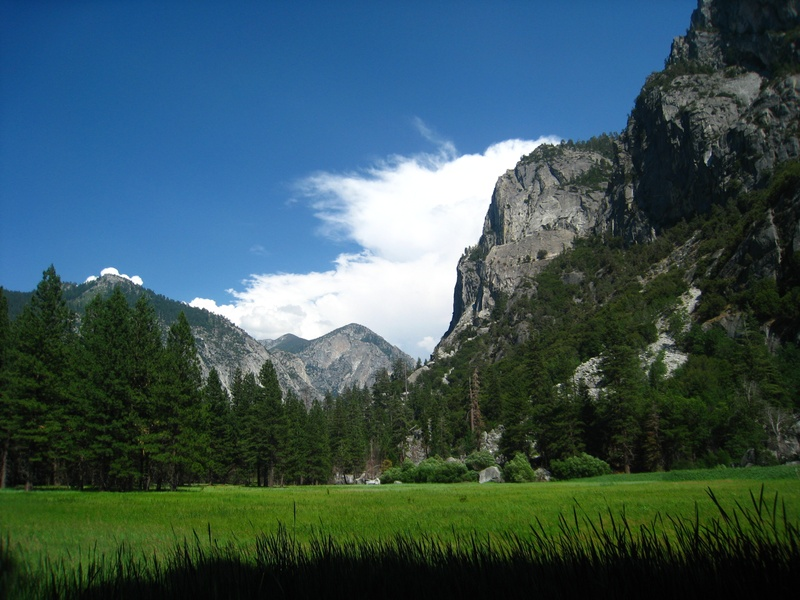 Meadow on hike at Kings Canyon