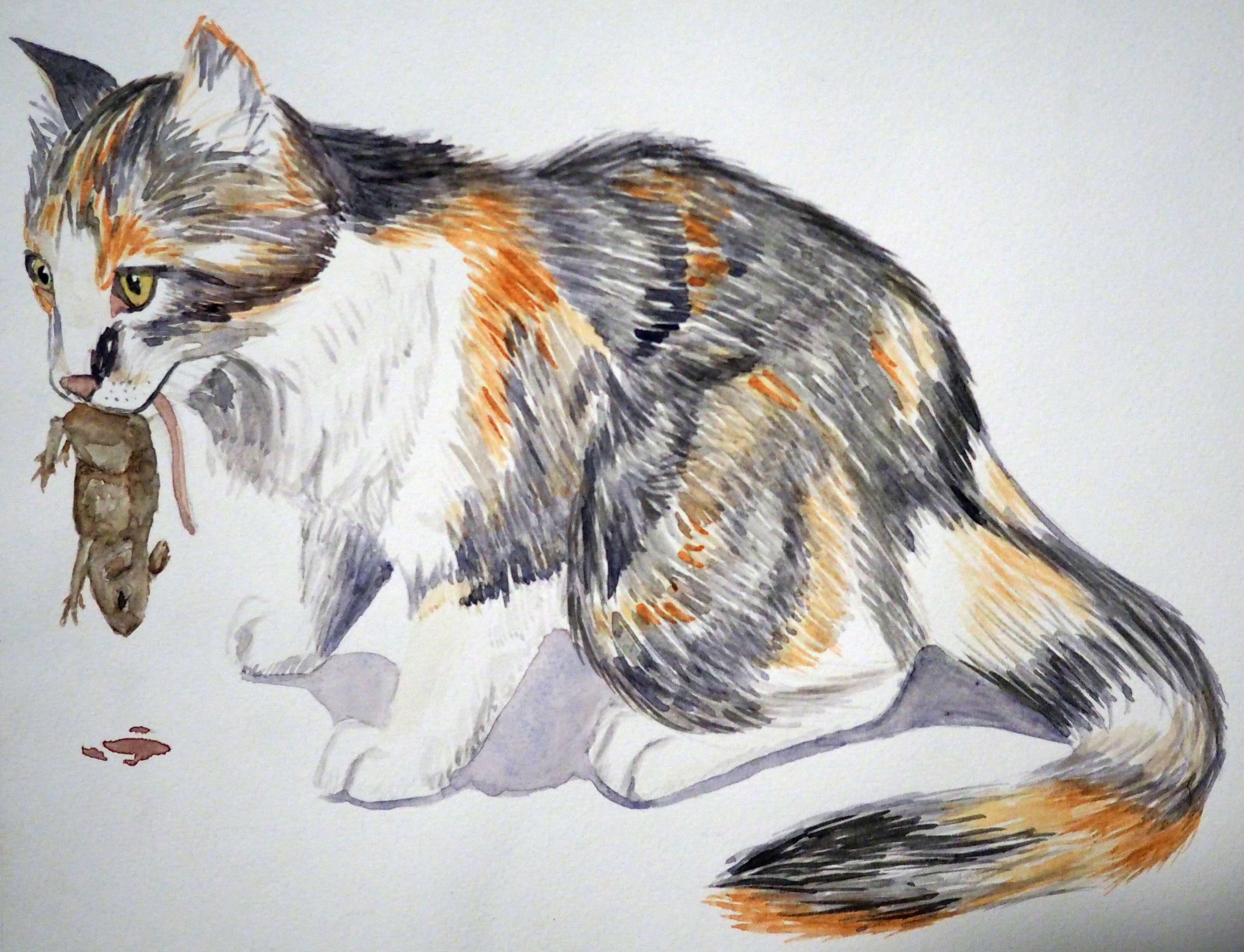 Mothpaw Watercolor