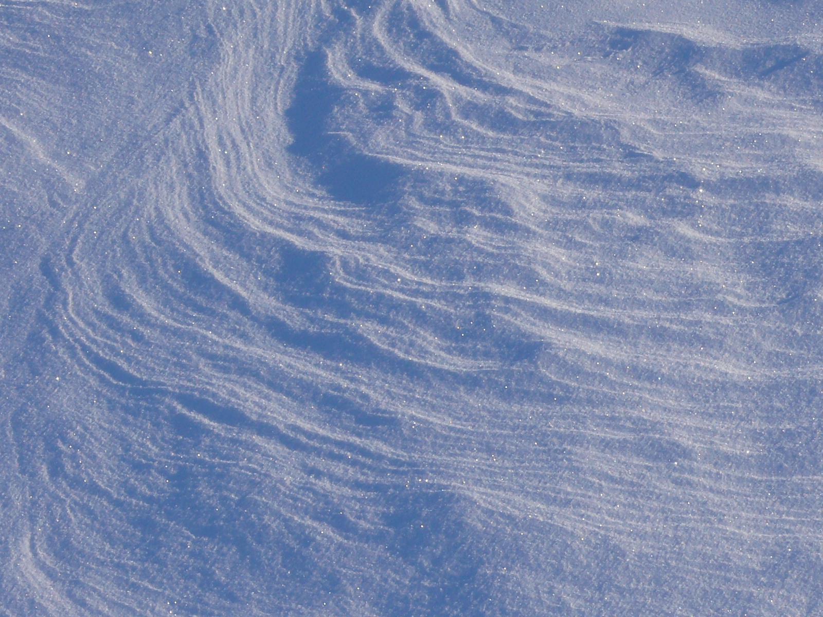 Pattern in snow, #1.